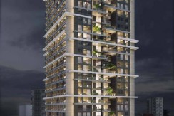 New Development for sale in Daun Penh Boeung Reang
