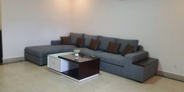Beautiful Condo for rent with river view (4)