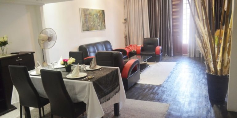 full furniture Apartment for rent in Daun penh (3)