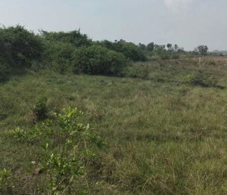 land for sale kep